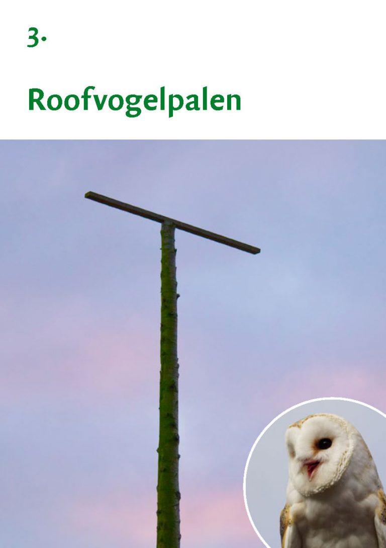 Biodiversiteit A7 Gemeente Rheden LR WEB_Pagina_07