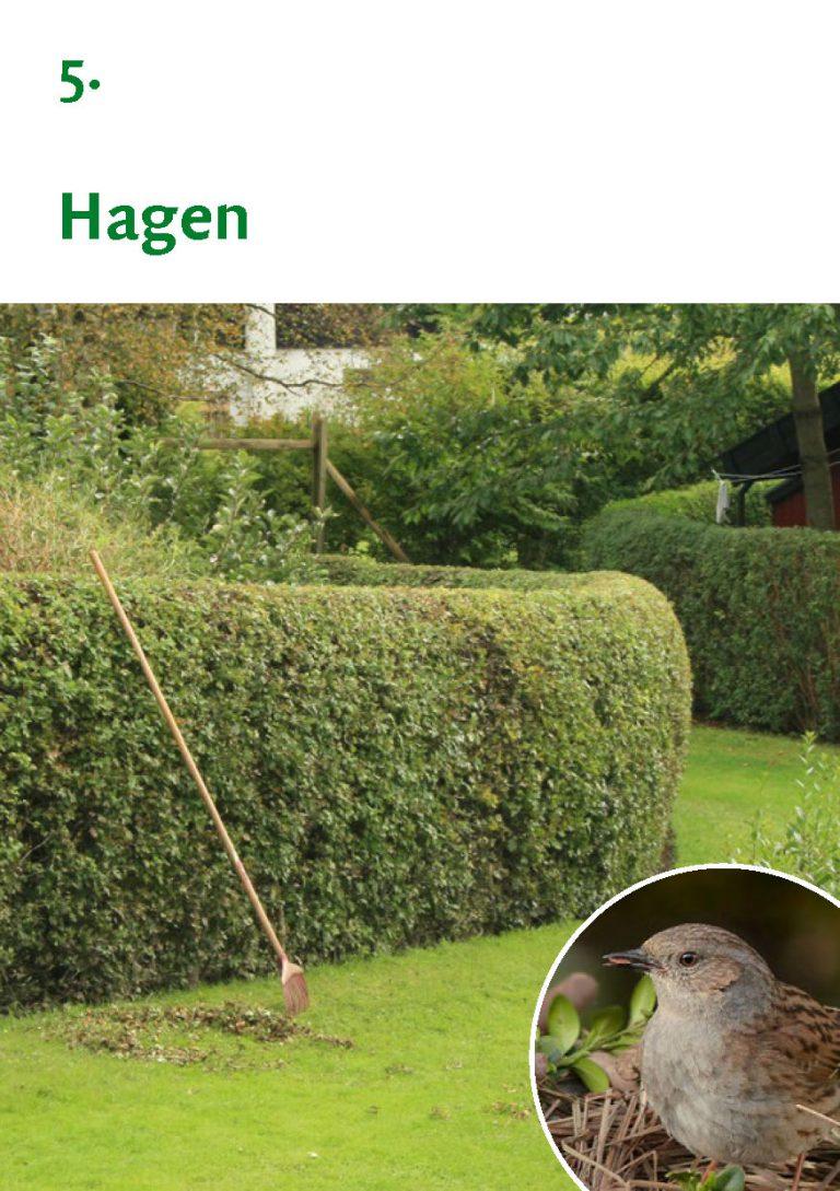 Biodiversiteit A7 Gemeente Rheden LR WEB_Pagina_11