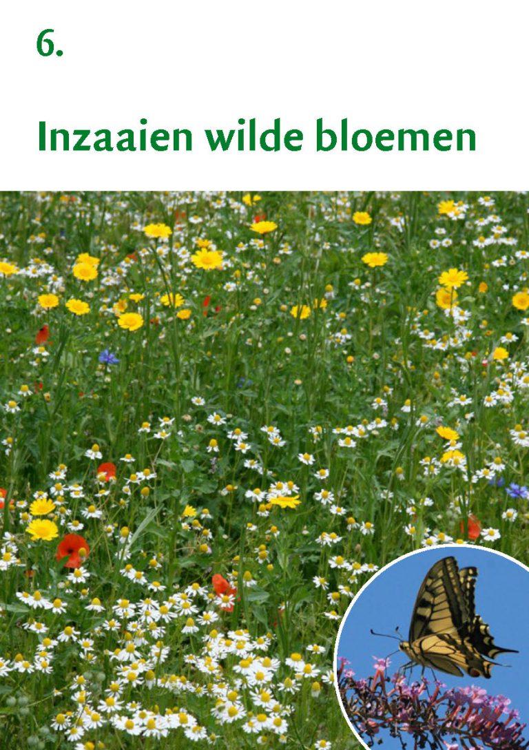 Biodiversiteit A7 Gemeente Rheden LR WEB_Pagina_13
