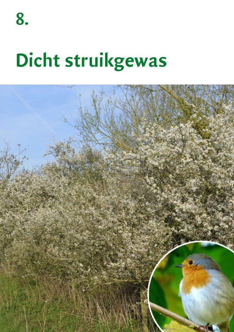 Biodiversiteit A7 Gemeente Rheden LR WEB_Pagina_17
