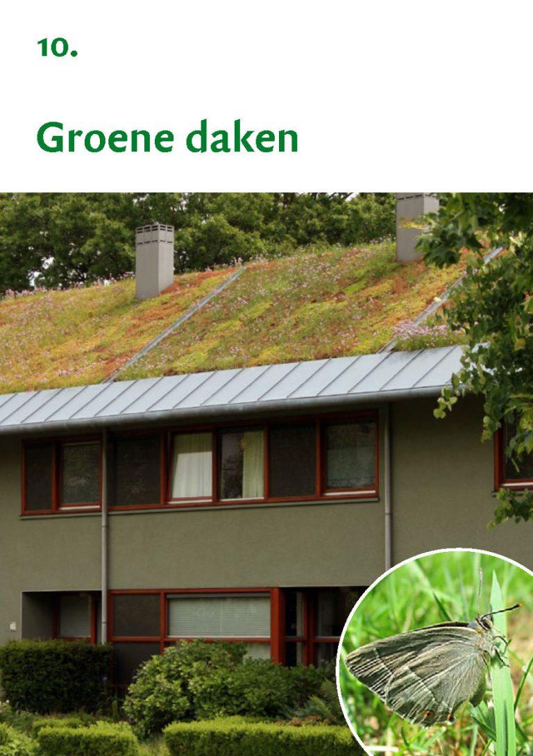 Biodiversiteit A7 Gemeente Rheden LR WEB_Pagina_21