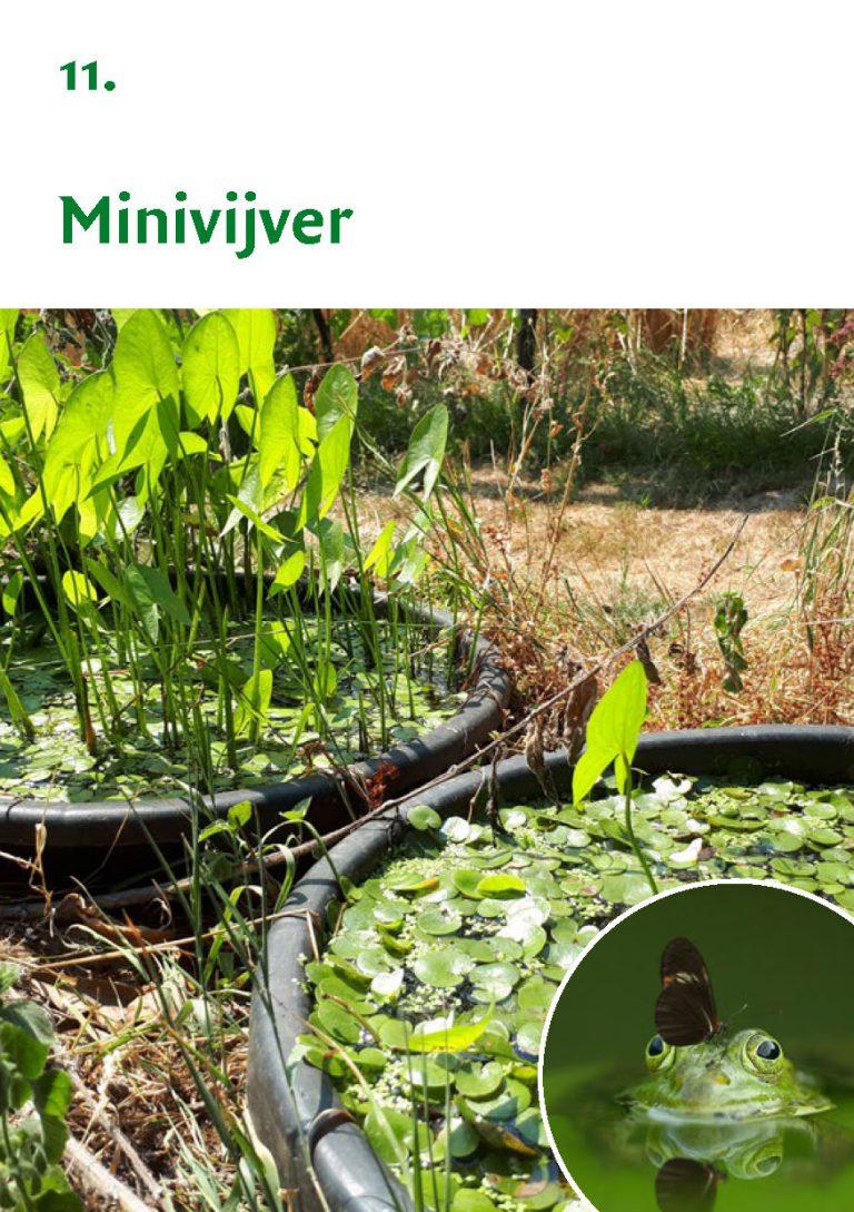 Biodiversiteit A7 Gemeente Rheden LR WEB_Pagina_23