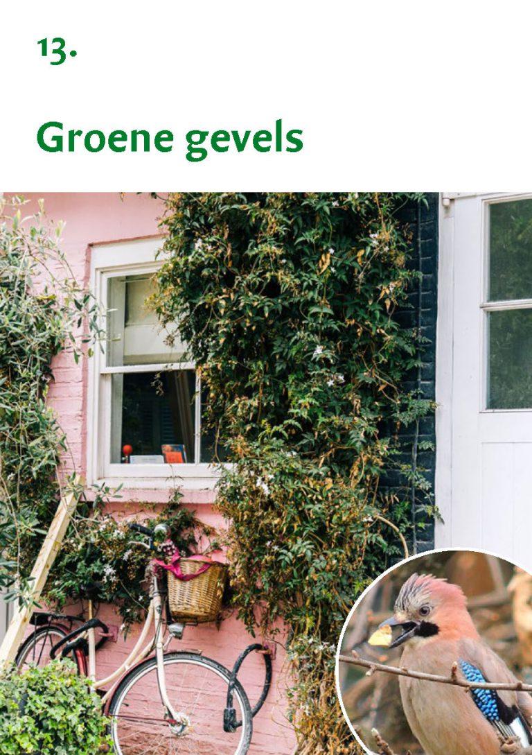 Biodiversiteit A7 Gemeente Rheden LR WEB_Pagina_27