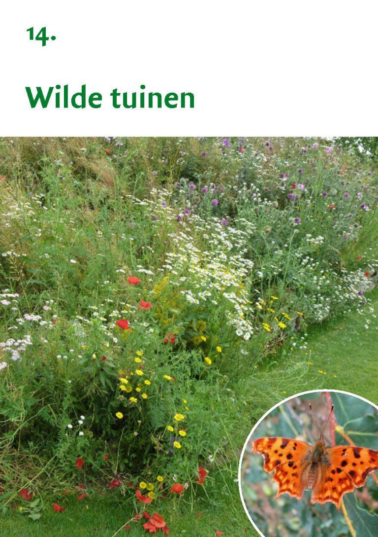 Biodiversiteit A7 Gemeente Rheden LR WEB_Pagina_29