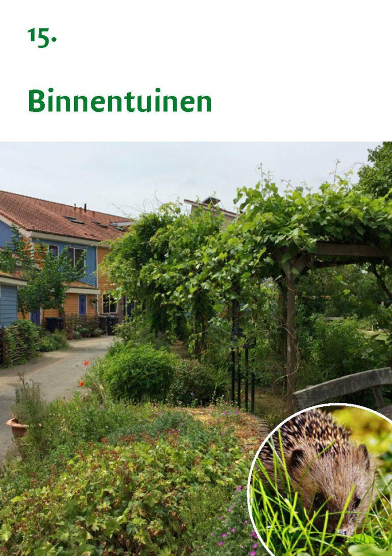 Biodiversiteit A7 Gemeente Rheden LR WEB_Pagina_31