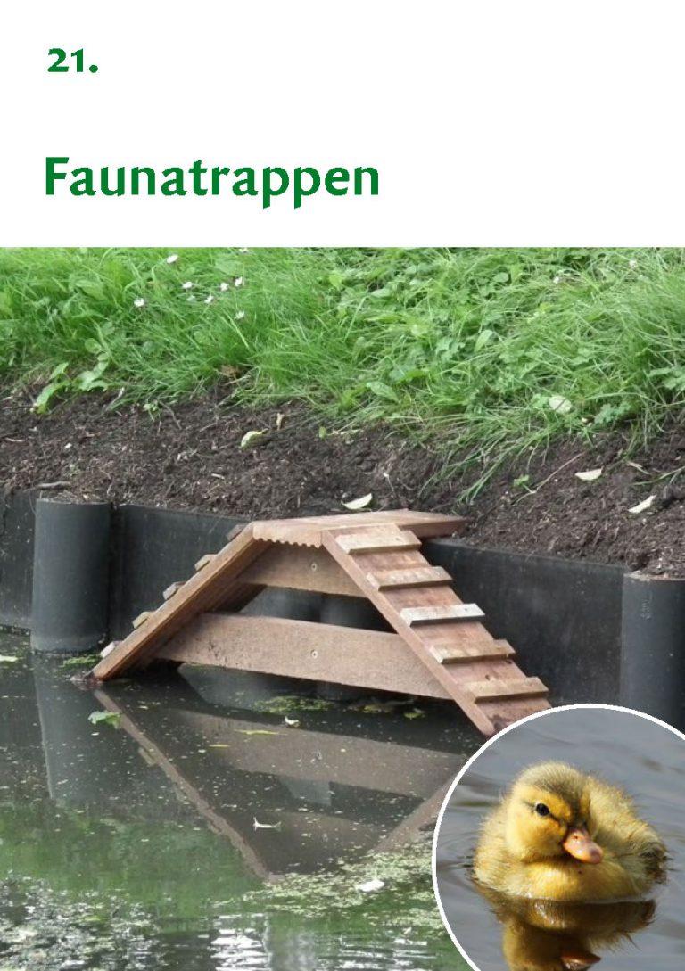 Biodiversiteit A7 Gemeente Rheden LR WEB_Pagina_43